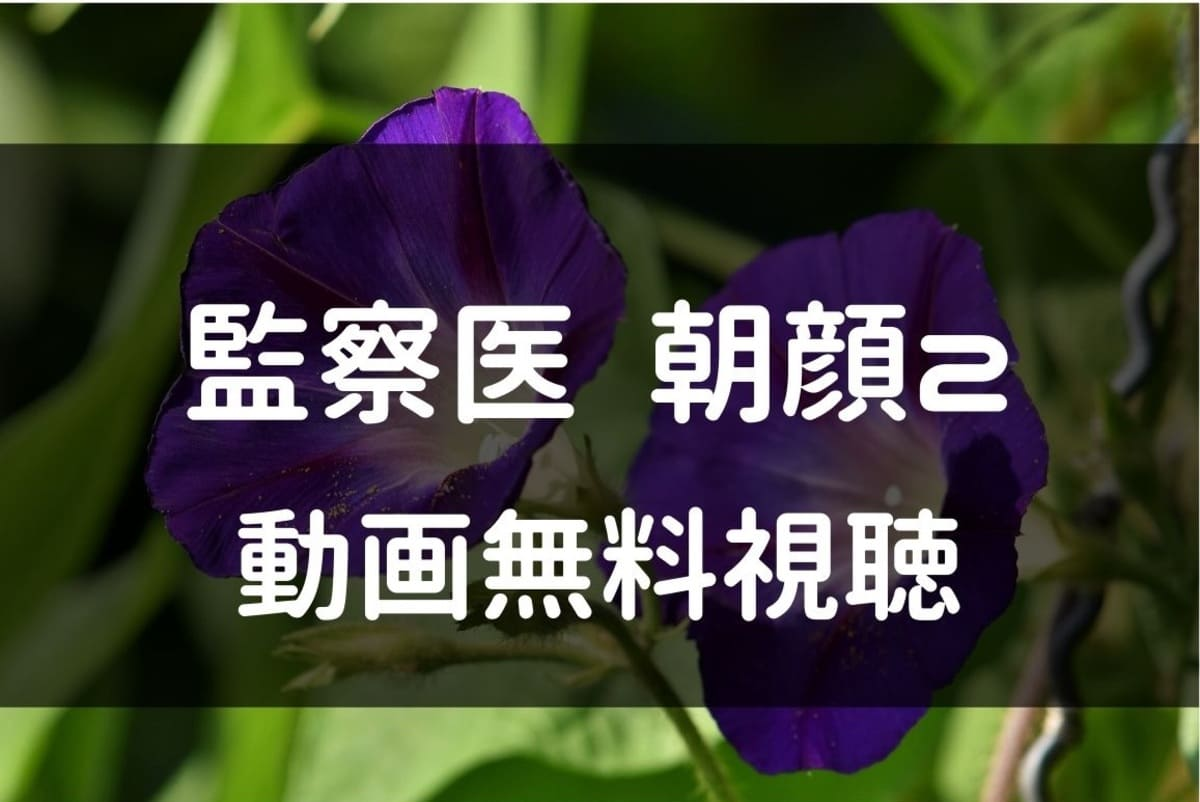 監察医朝顔 動画
