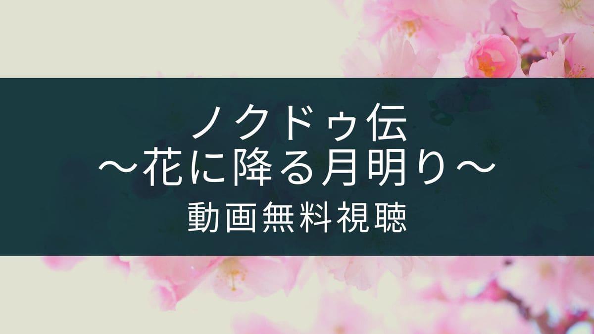 キャスト ノクドゥ 伝